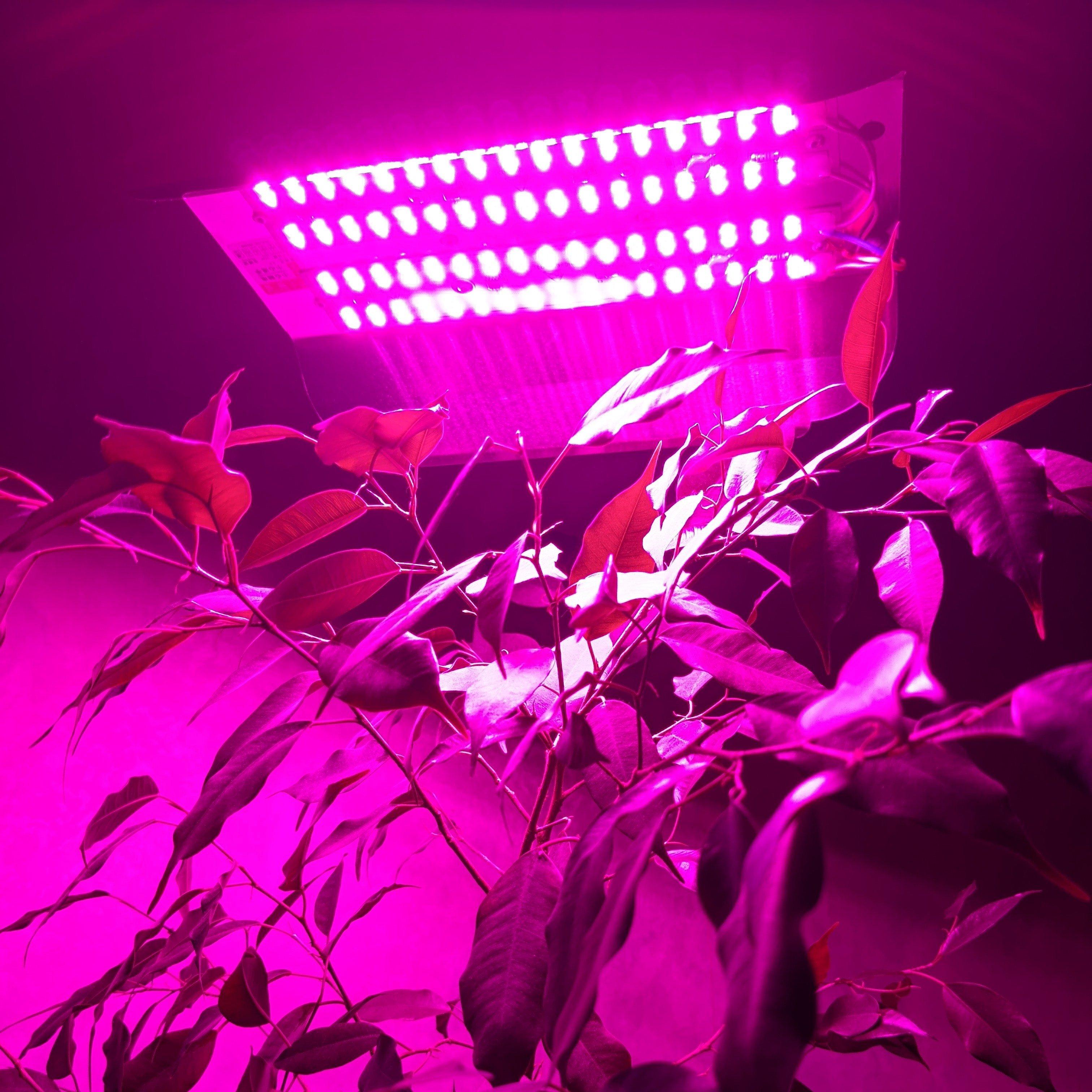 LED светильник для растений 60W 001014 купить в Украине, Харькове, Киеве по доступной цене